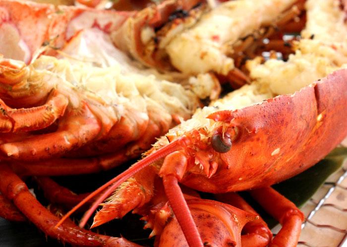 Grilled Fresh Lobster